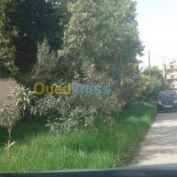 location ouedknisse
