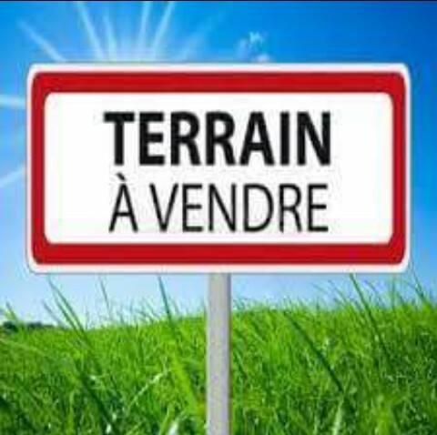 agence elfeth: vend terrain 1274m2 à ben-mhidi el-taref ouedkniss