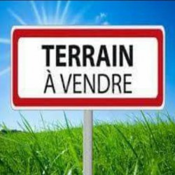 agence elfeth: vend terrain agricole 66 hectares à khanchla om bouaki ouedkniss