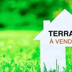 terrain a vendre ( hydra, cheraga, ouled fayet , beni messous ) ouedkniss